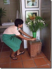 of course the vase of flowers and  plants from Bayan Indah garden too...